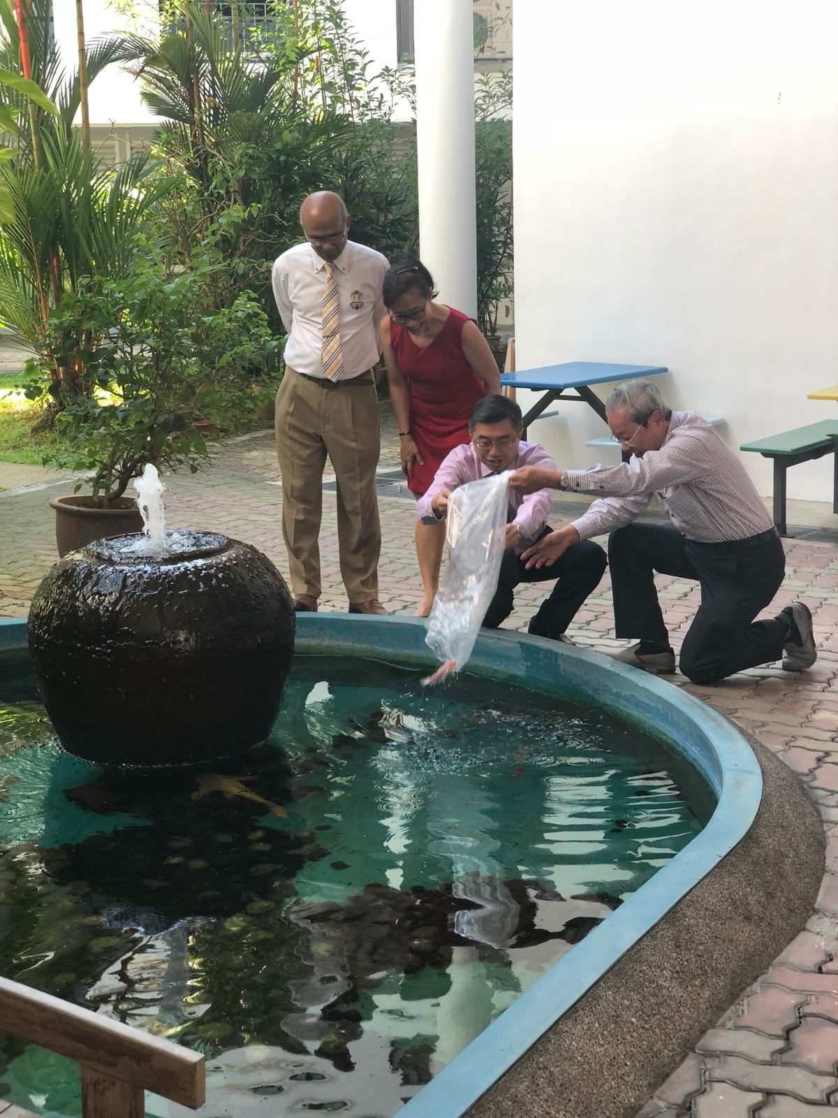 Mr  Lee Tiong Sa (SAC Chairman 1978 -2012) release of koi at Punggol campus (2018).jpeg